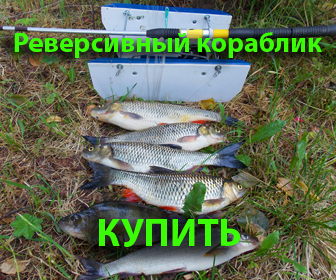 Хотите ловить трофейную рыбу?